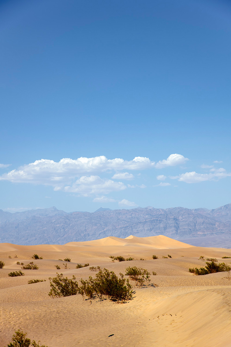 Death Valley Flat sand dunes